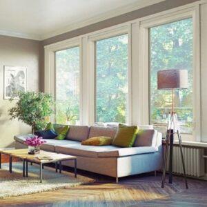 Windows in Living Room