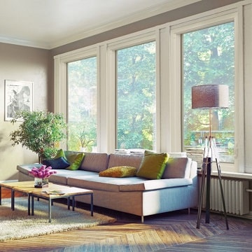 Windows in Living Room